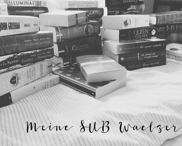 Mein Wälzer-SUB | Bücher mit mehr als 500 Seiten