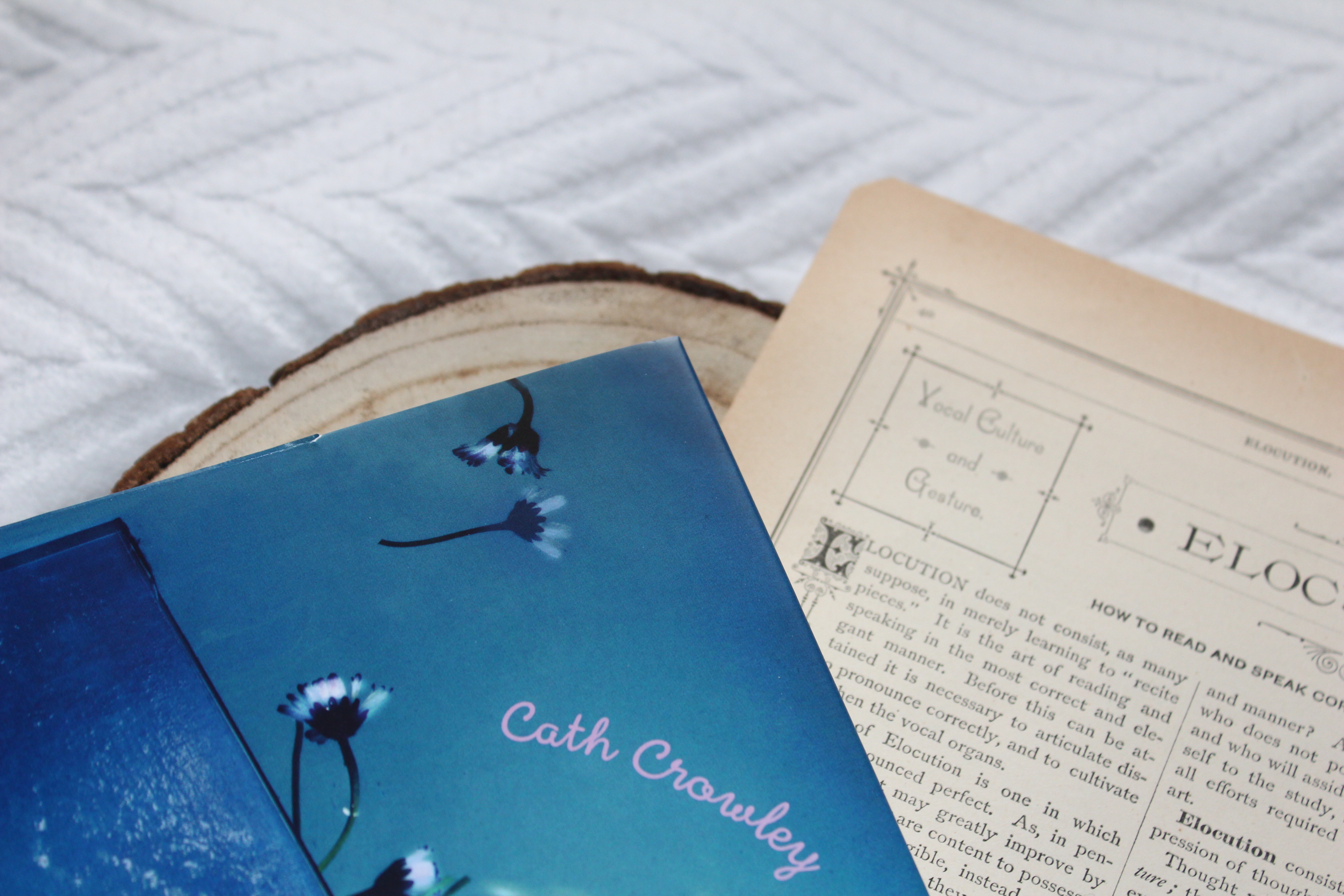 Das tiefe Blau der Worte - Cath Crowley