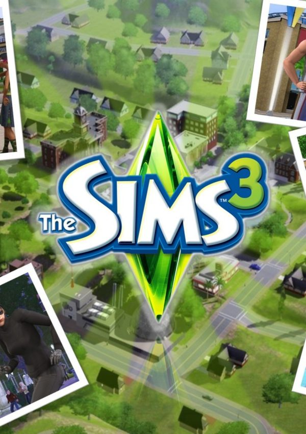 Die Sims Let's Plays: Meine Fragen, eure Wünsche