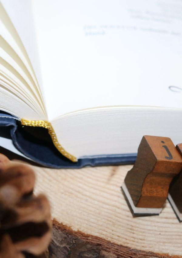 Ich habe eine Brieffreundin aus den Niederlanden | Viking Pen Pal Blogger Box